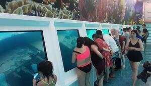 Marmariste deniz dibinin görüldüğü tekneye ilgi