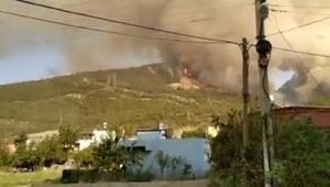 Son dakika haberleri... İskenderundaki yangınla ilgili şoke eden iddia