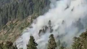 Son dakika... Gümüşhane Örümcek Ormanlarında yangın Vali ve kaymakamdan korkutan açıklama