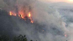 Başsavcılıktan Hataydaki orman yangınıyla ilgili açıklama: Soruşturma devam etmektedir