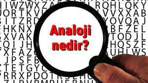 Analoji nedir Benzeşim ne demek Analoji türleri ve örnekleri