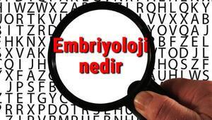 Embriyoloji nedir ve neyi inceler Embriyoloji bilimi hakkında kısaca bilgiler