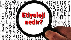 Etiyoloji nedir Etiyolojik faktör ne demek Etiyoloji bilimi neler ile ilgilenir