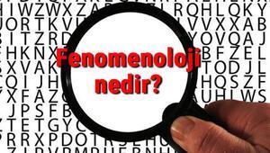 Fenomenoloji nedir Fenomenoloji (Görüngübilim) örnekleri, temsilcileri ve hakkında kısaca bilgi