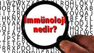 İmmünoloji nedir İmmünolog ne demek İmmünoloji uzmanı (İmmünolog) neye ve hangi hastalıklara bakar