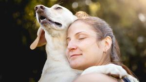 DNA araştırması: İnsanlar önce köpekleri evcilleştirdi