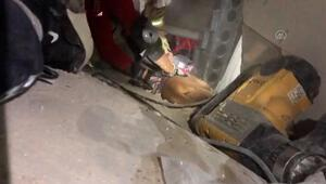 Depremde enkazda kalan İnci Okanın köpeği de kurtarıldı
