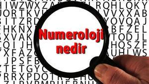 Numeroloji nedir ve ne işe yarar Numeroloji hakkında bilgiler