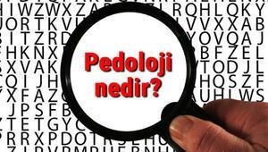 Pedoloji nedir Pedoloji neyi inceler Pedeolojinin inceleme alanları hakkında bilgiler