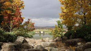 Bozkırın ortasındaki Japon Bahçesi sonbaharın kattığı güzellikle ziyaretçilerin ilgi odağı oluyor