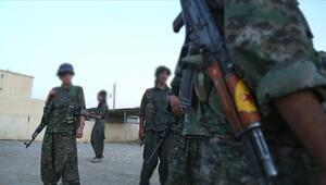Son dakika haberi: PKKya bir darbe daha İzin verilmemeli