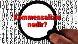 Kommensalizm nedir Kommensalizm (Tek taraflı birliktelik) hakkında bilgi