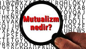 Mutualizm nedir Mutualizm (Karşılıklı fayda birlikteliği) hakkında bilgi
