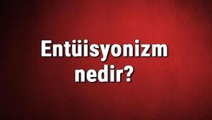 Entüisyonizm nedir Sezgicilik ne demek Felsefede Entüisyonizm (Sezgicilik) akımı özellikleri, kurucusu ve temsilcileri