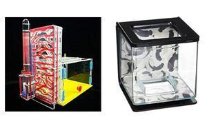 Akvaryum fiyatları - En iyi, ucuz kaliteli akvaryum modelleri ve tavsiyeleri