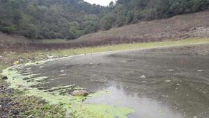 Doluluğu yüzde 29a düşen İstanbul barajlarında dip suyu tehlikesi