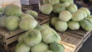 Kışın habercisi Bayburt lahanası tezgahta yerini aldı