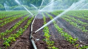 Ankara sulu tarımla ekonomiye 94 milyon TL katkı sağladı