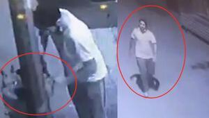Hırsızlara karşı iş yerinin önüne bağladığı köpeği çalındı