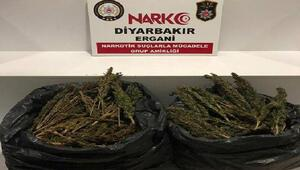 Erganideki uyuşturucu operasyonuna 2 tutuklama