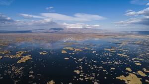 Eber Gölü, kesin korunacak hassas alan ilan edildi