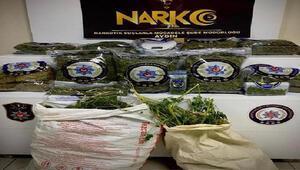Ormanda uyuşturucu ile yakalanan 1 kişi tutuklandı