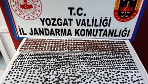 Yozgatta bin 300 tarihi sikke ele geçirildi