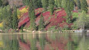 Sonbaharda ziyaret edilecek en iyi 5 tabiat parkı