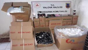 İzinsiz ve belgesiz üretim yapan seracılara 135 bin lira ceza