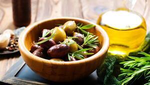 Antalyada zeytin bahçelerinde hareketlilik başladı