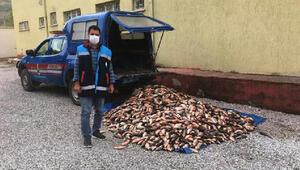 Kaçak avlanan balıkçılara 5 bin 100 lira ceza