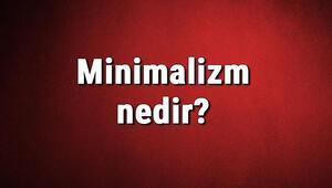 Minimalizm nedir Minimalist ne demek Minimalizm akımı kurucusu, örnekleri, eserleri ve temsilcileri hakkında bilgi