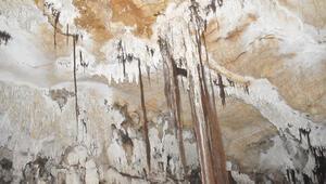Sırtlanini Mağarası turizme kazandırılacak