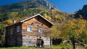 Güz mevsimin keyfine varacağınız en güzel dağ evleri