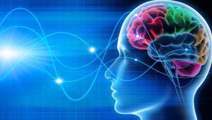 Konversiyon histeri ne demek İşte konversiyon ve histeri terimlerinin anlamları