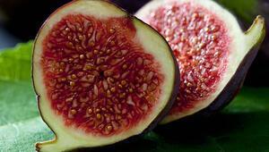 Okuyunca şoke olacaksınız Yediğiniz her incirde...
