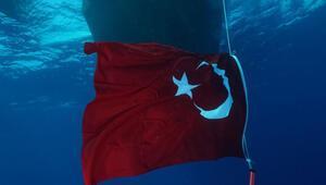 Türk fotoğrafçılar Kızıldenizin su altı güzelliklerini yansıttı