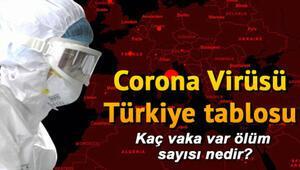 Son dakika haberi...15 Kasım koronavirüs (coronavirüs) Türkiye tablosunda son durum: İl il corona virüs vaka sayısı verileri