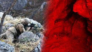 Son dakika haberi: Terör örgütü PKKnın Türkiyedeki 1 numaralı ismi öldürülmüştü Detaylar ortaya çıktı