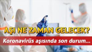 Son Dakika Haber... Koronavirüs (coronavirüs) aşısı Türkiyeye geldi mi, fiyatı ne kadar olacak İşte korona virüs aşısında son durum