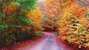 Kaz Dağları sonbaharda rengarenk