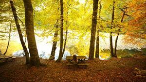 Yedigöller ve Gölcük sonbahar görüntüsüyle hayranlık uyandırıyor