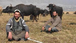 Sağır ve dilsiz 2 kardeş, 20 yıldır çobanlık yapıyor