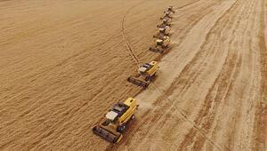 Sakaryada sulanan tarım arazileriyle ekonomiye 375 milyon lira katkı sağlandı