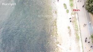 Kadıköy Caddebostanda deniz çekildi, tedirginlik yaşandı