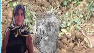Melihat Tunçel nasıl öldü, katili kim Melihat Tunçel cinayetinin ayrıntıları
