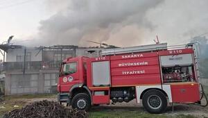 Sakaryada 2 ev yandı