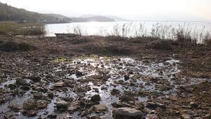 Sapanca Gölü'nün son hali görenleri şaşırtıyor