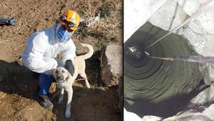 Niğde'de 4 gündür su kuyusunda mahsur kalan köpek kurtarıldı
