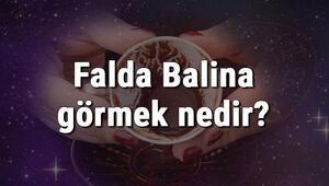 Falda Balina görmek nedir Kahve falında balina görmenin anlamı